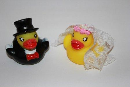Entchen Hochzeitspaar Badeente, Hochzeit
