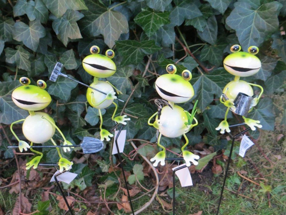 Frosch Auf Stab